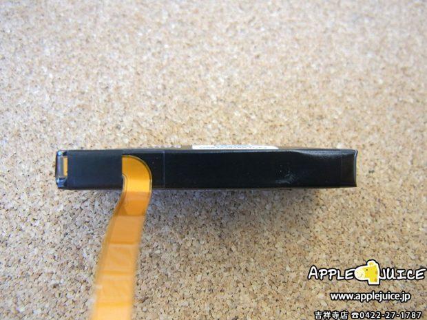 iPodClassic バッテリー自体の写真