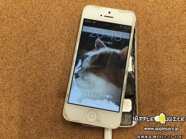 水没洗浄し復活したiPhone5