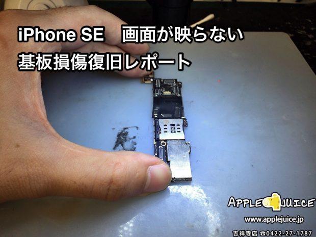 突然液晶が映らなくなってしまったiPhone SE  復旧作業レポート (四国の同業様からのご依頼)