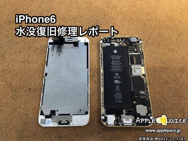 iPhone6 水没データ救出作業レポート(杉並区 T様)